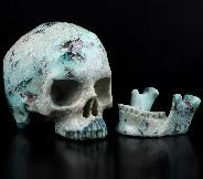 "Gemstone 5.0"" American Chrysocolla Carved Crystal Detachable Skull, Super Realistic, Crystal Healing"
