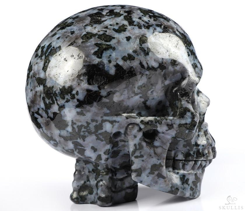 Gabbro Crystal Skull With Spine