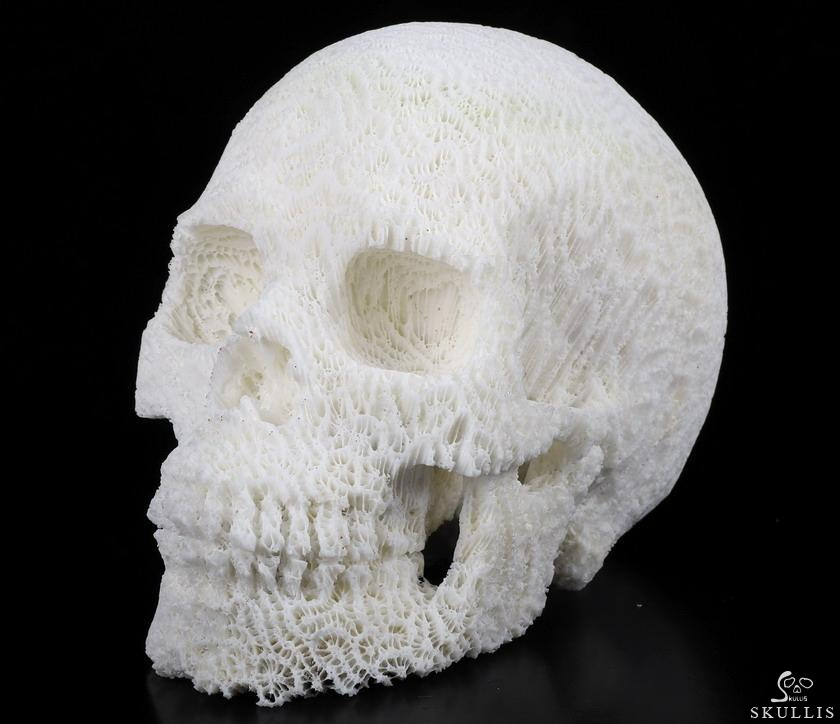 White Coral Crystal Skull