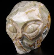 "Gemstone 2.0"" Crazy Lace Agate Carved CrysFemale Alien Skull, Crystal Healing"