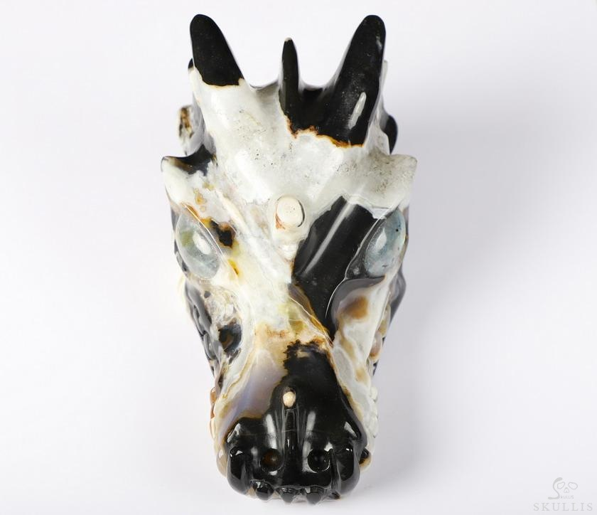 Black Zebra Agate Crystal Dragon skull, Labradorite Eyes