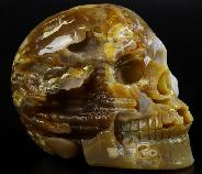 "Rare 5.0"" Agate Geode Carved Crystal Skull, Crystal Healing"