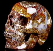"Gemstone Huge 4.9"" Pietersite Carved Crystal Skull, Super Realistic"