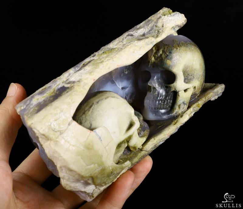 Petrified Wood Crystal Double Skull Sculpture