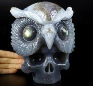 "Amazing 6.6"" Agate Carved Crystal Skull with Owl Sculpture, Crystal Healing"