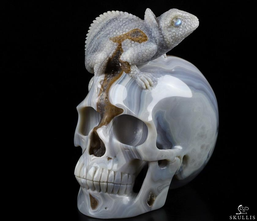 Gray & White Agate Geode Crystal Skull with Chameleon