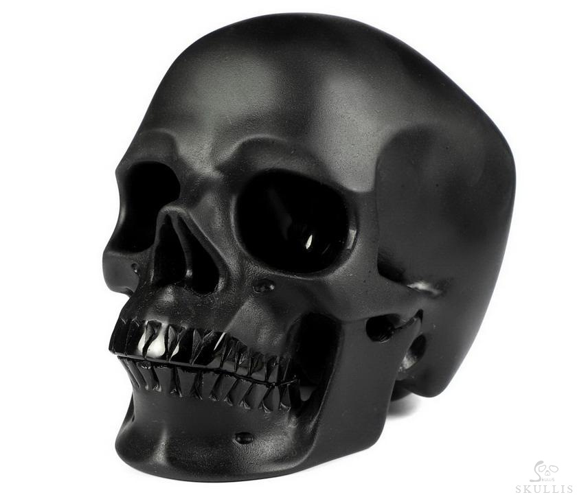 Black Obsidian Crystal Frosted Skull