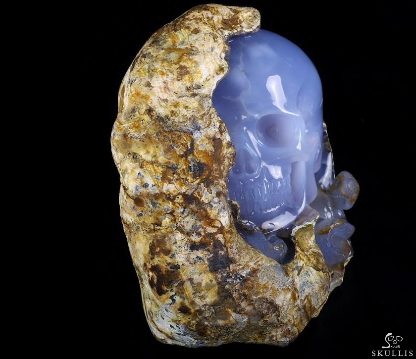 Blue Chalcedony Crystal Skull With Snake Sculpture