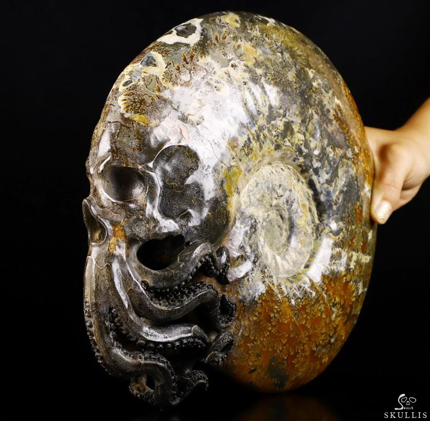 Ammonite Fossil Crystal Skull Sculpture