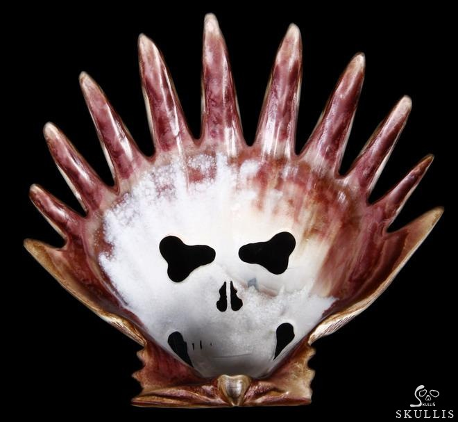 Scallop Shell Crystal Skull Mask