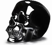 "HUGE 5.1"" Black Obsidian Carved Crystal Skull, Super Realistic"