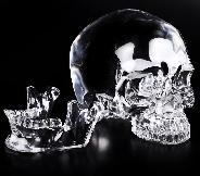 "Lifesized Optically Clear 7.5"" K9 CRYSTAL Carved Crystal Detachable Skulls, Super Realistic, Crystal Healing"