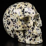 "2.0"" Dalmatine Carved Crystal Skull, Realistic, Crystal Healing"
