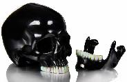 Oct 29, 2014 ACSAD (A Crystal Skull a Day) - These Are the Voices - Black Obsidian Carved Crystal Skull with Opal Teeth and Detachable Jaw Sculpture