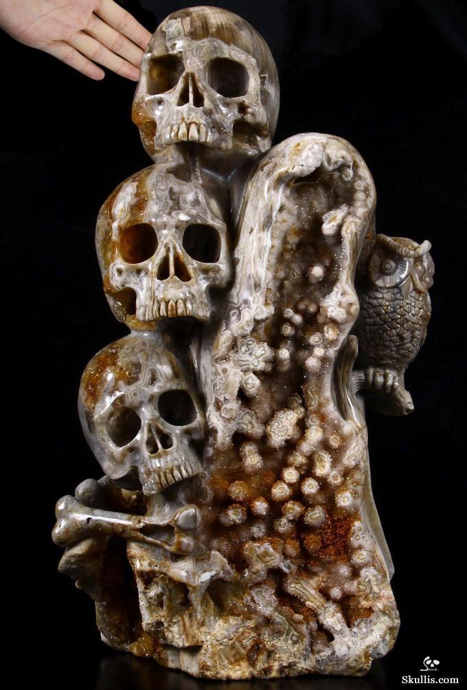 Feb acsad a crystal skull day wisdom