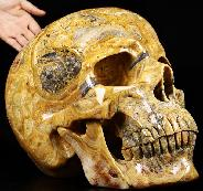 (38.4LB )Feb 3, 2015 ACSAD (A Crystal Skull a Day) - Faly Goavana - Titan Crazy Lace Agate Carved Crystal Skull Sculpture