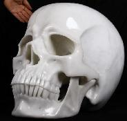 (330.4LB)Apr 11, 2015 ACSAD (A Crystal Skull a Day) - Jupiter - Titan White Jade Carved Crystal Skull Sculpture