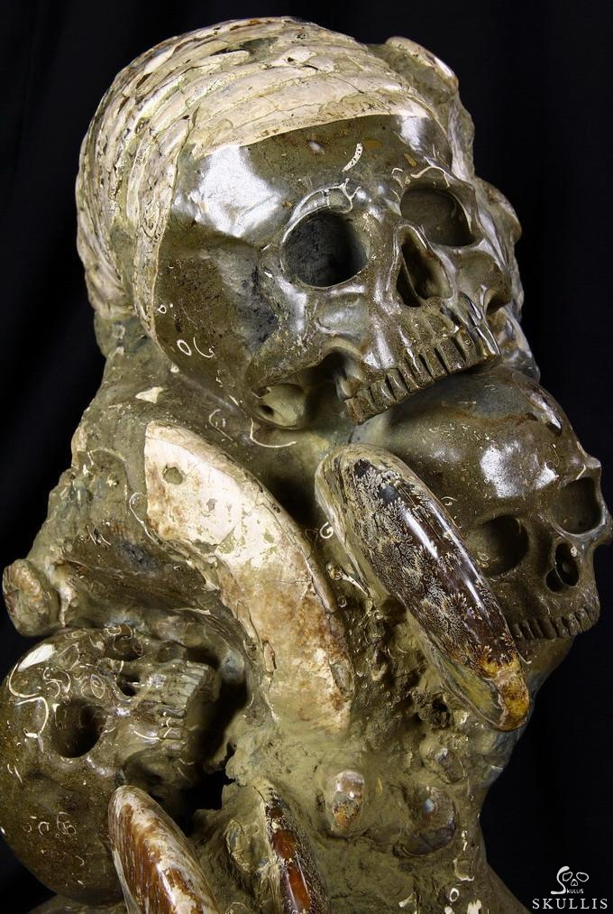 Ammonite Fossils Crystal Skull Sculpture