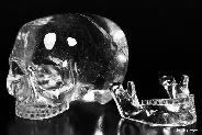 May 27, 2015 ACSAD (A Crystal Skull a Day) - Quartz Rock Crystal Carved Mitchell-Hedges Crystal Skull of Doom Replica Sculpture