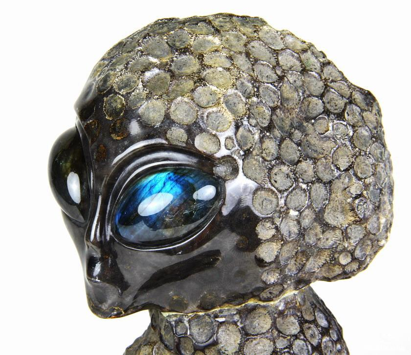 Coral Fossil Crystal Alien Sculpture & Labradorite Eyes
