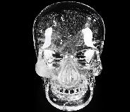 "5.0"" Quartz Rock Crystal Carved Crystal Skull Mitchell-Hedges Crystal, Realistic"
