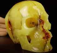 "AMAZING Huge 5.1"" Baltic Amber Carved Crystal Skull,Super Realistic, Crystal Healing"